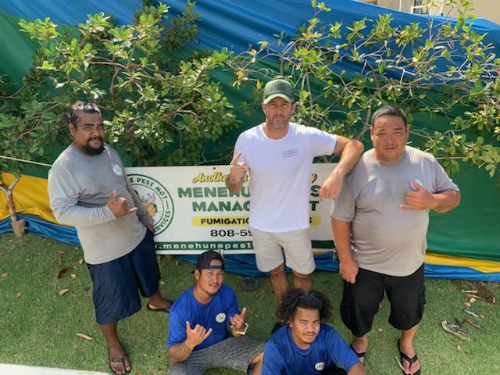 contact menehune pest management hawaii