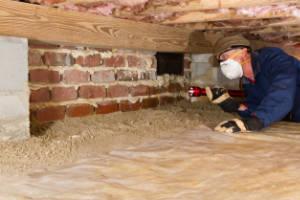 termite inspection menehune pest management hi